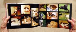 hands-photobook5